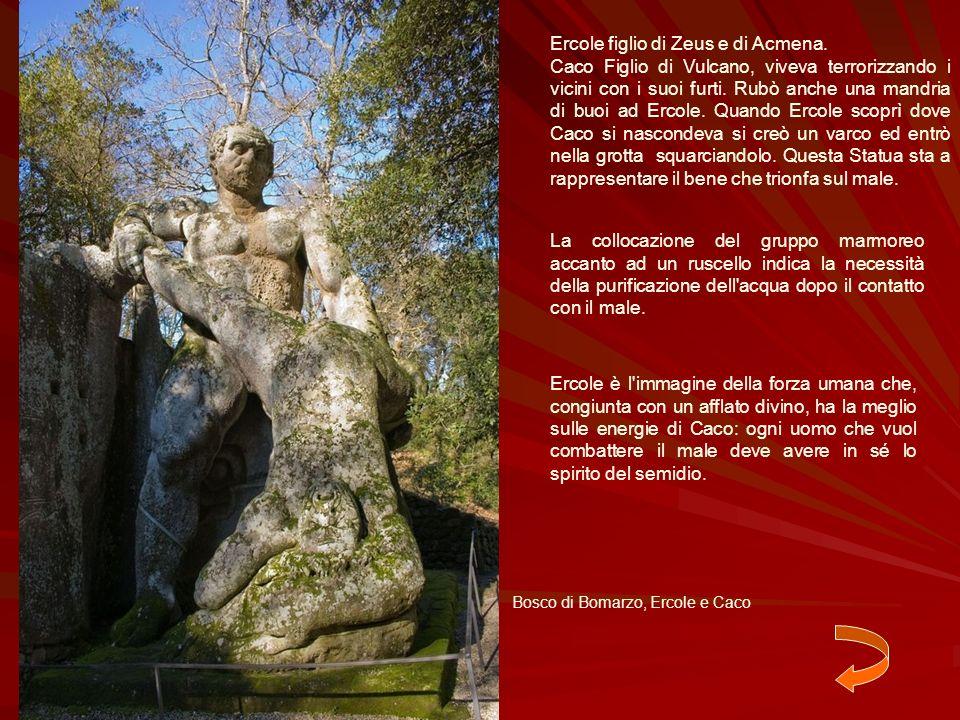 Ercole figlio di Zeus e di Acmena.