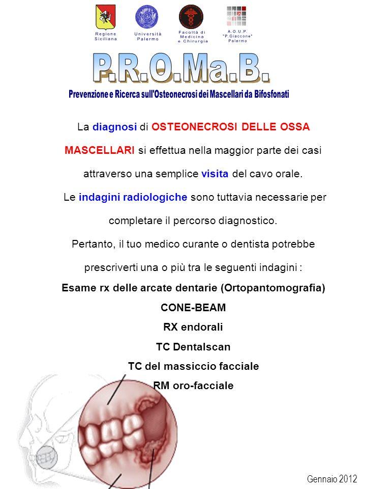 Esame rx delle arcate dentarie (Ortopantomografia) CONE-BEAM