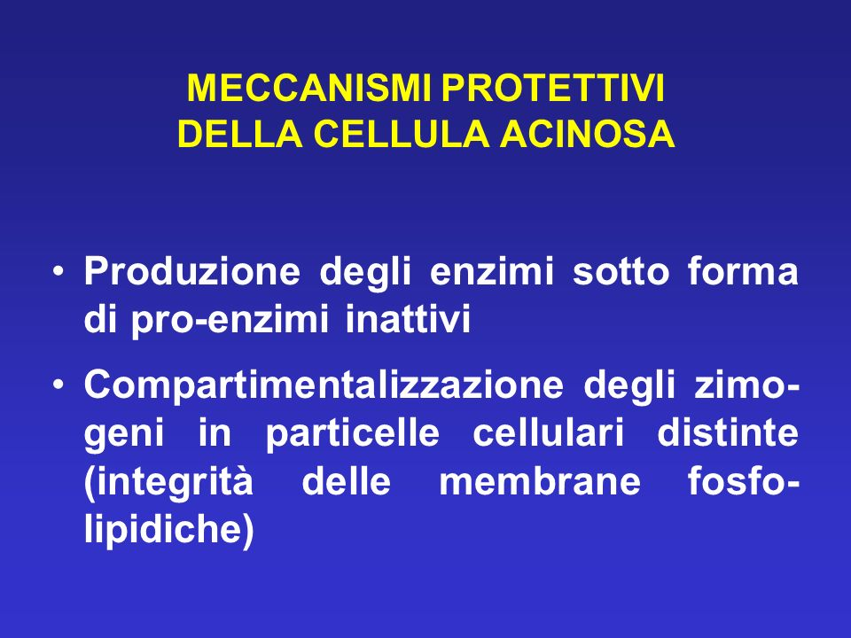 MECCANISMI PROTETTIVI DELLA CELLULA ACINOSA