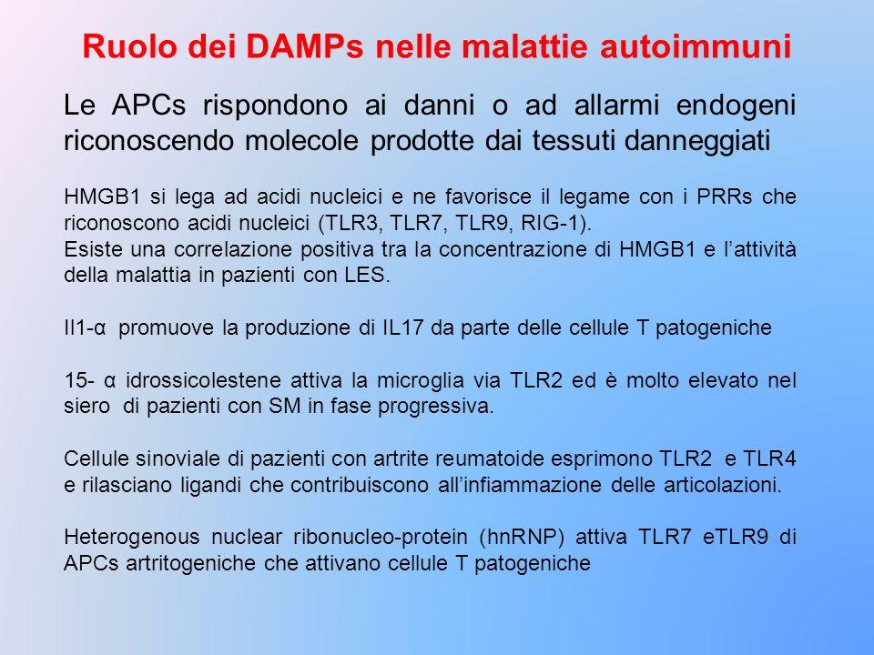 Ruolo dei DAMPs nelle malattie autoimmuni
