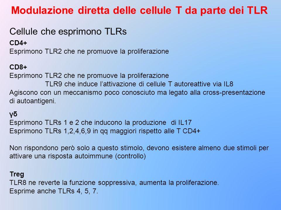 Modulazione diretta delle cellule T da parte dei TLR
