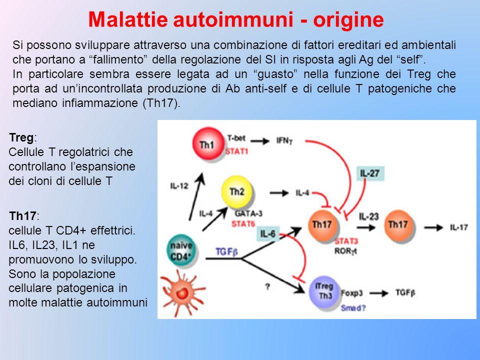 Malattie autoimmuni - origine