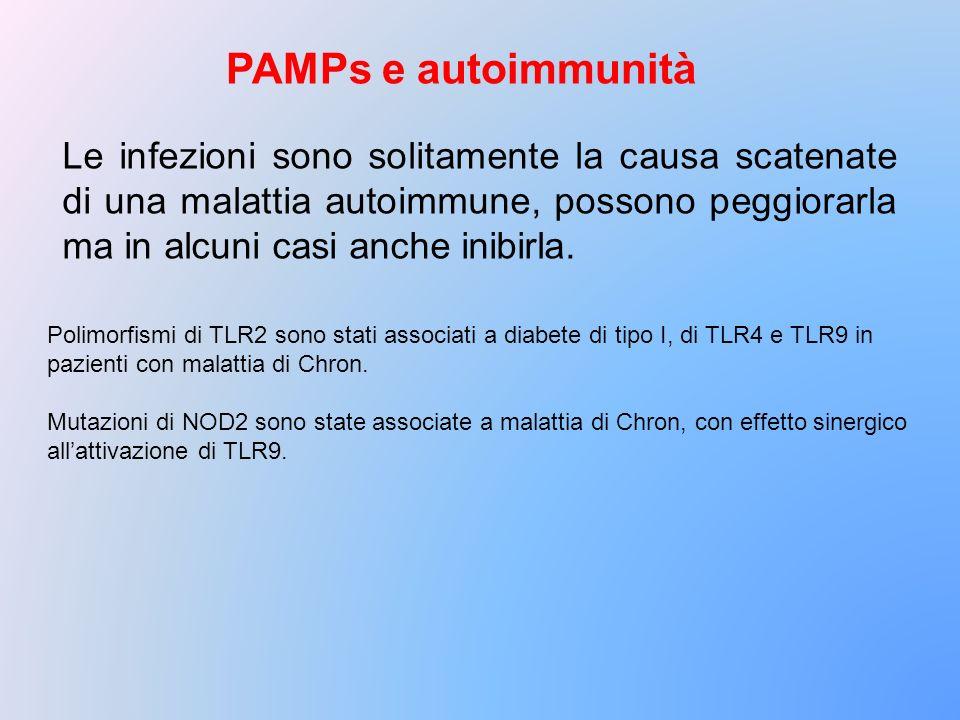 PAMPs e autoimmunità