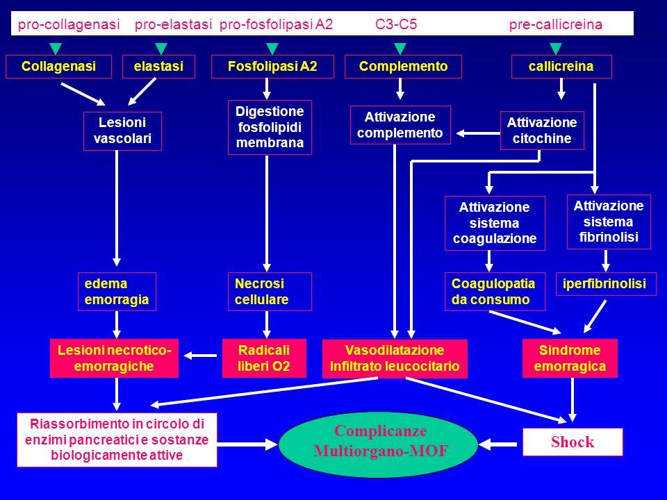 Complicanze Multiorgano-MOF Shock