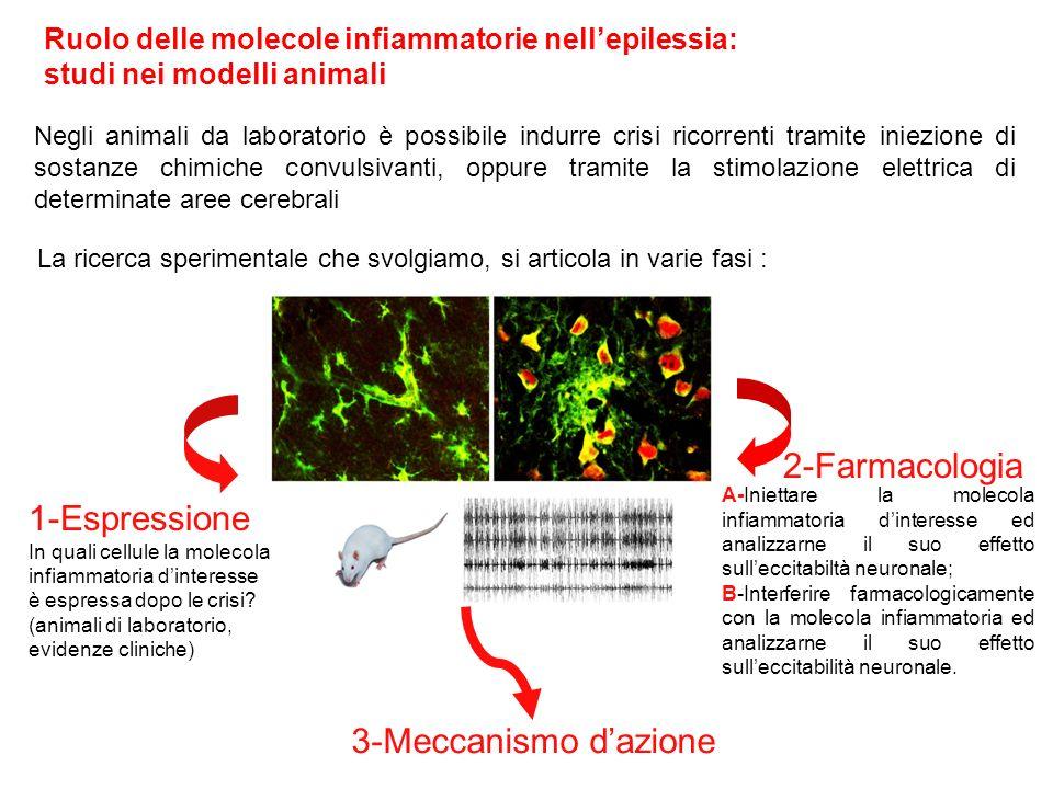 2-Farmacologia 1-Espressione 3-Meccanismo d'azione