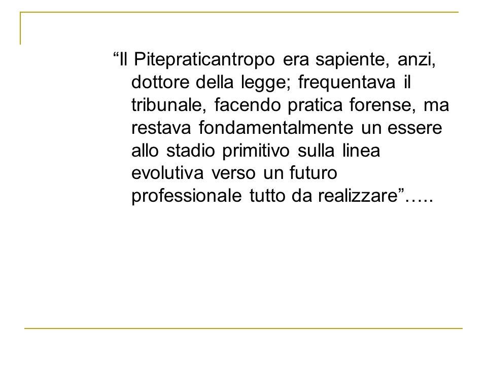 Il Pitepraticantropo era sapiente, anzi, dottore della legge; frequentava il tribunale, facendo pratica forense, ma restava fondamentalmente un essere allo stadio primitivo sulla linea evolutiva verso un futuro professionale tutto da realizzare …..