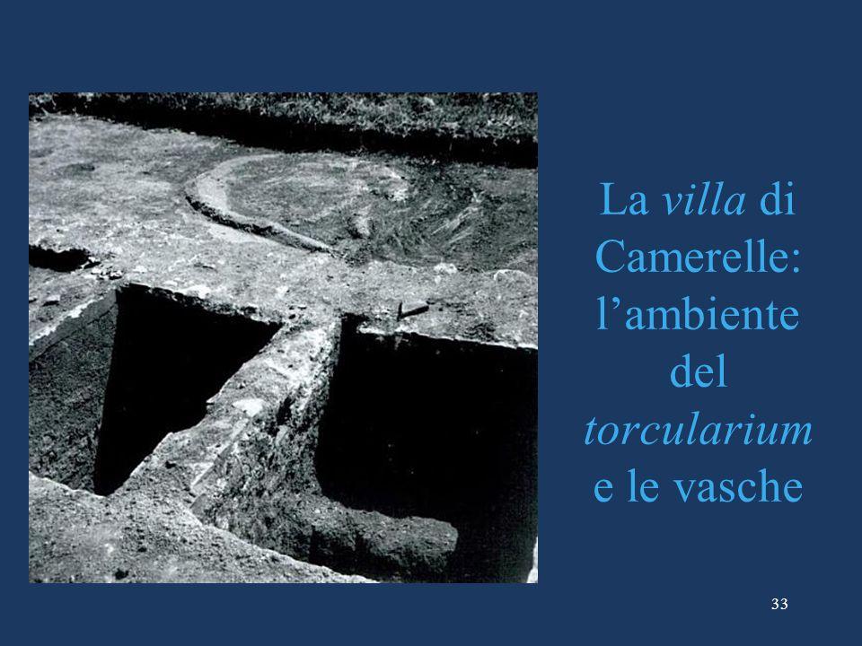 La villa di Camerelle: l'ambiente del torcularium e le vasche