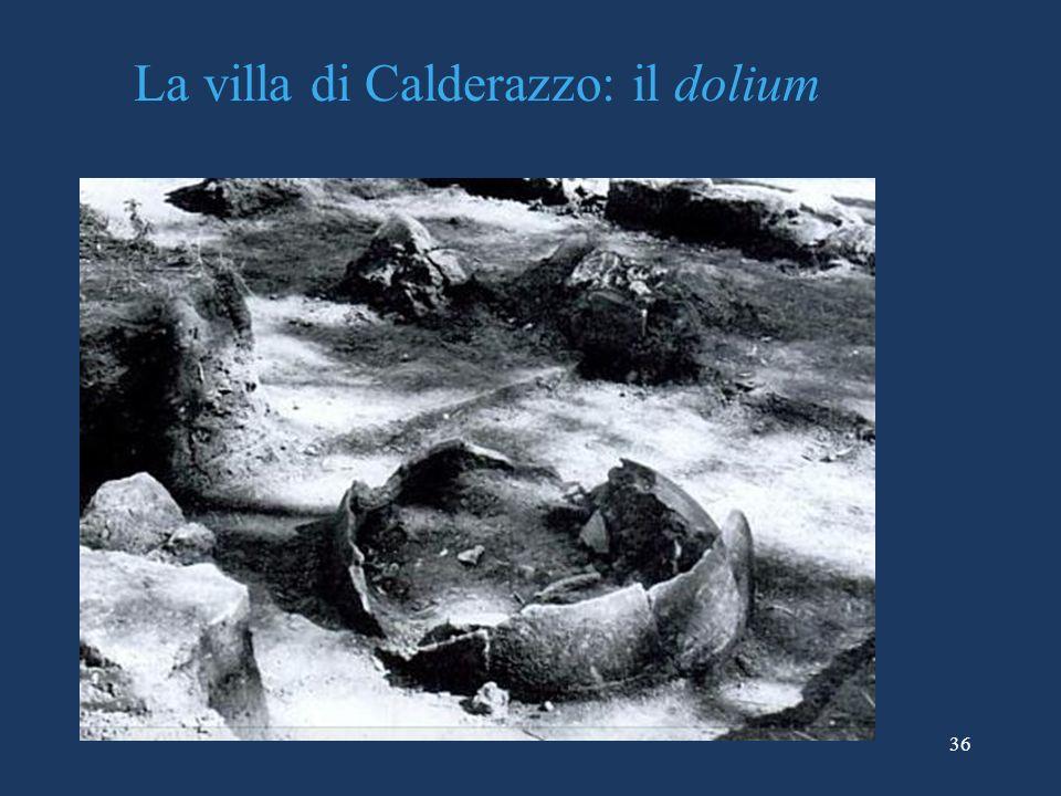 La villa di Calderazzo: il dolium