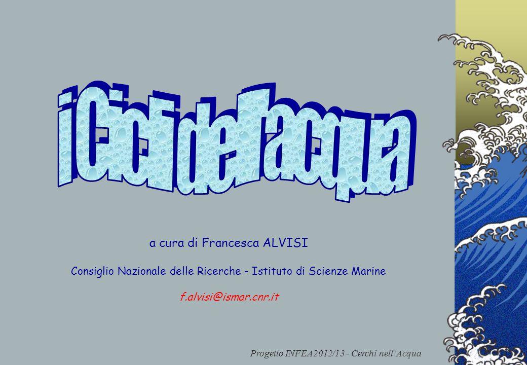 i Cicli dell acqua a cura di Francesca ALVISI