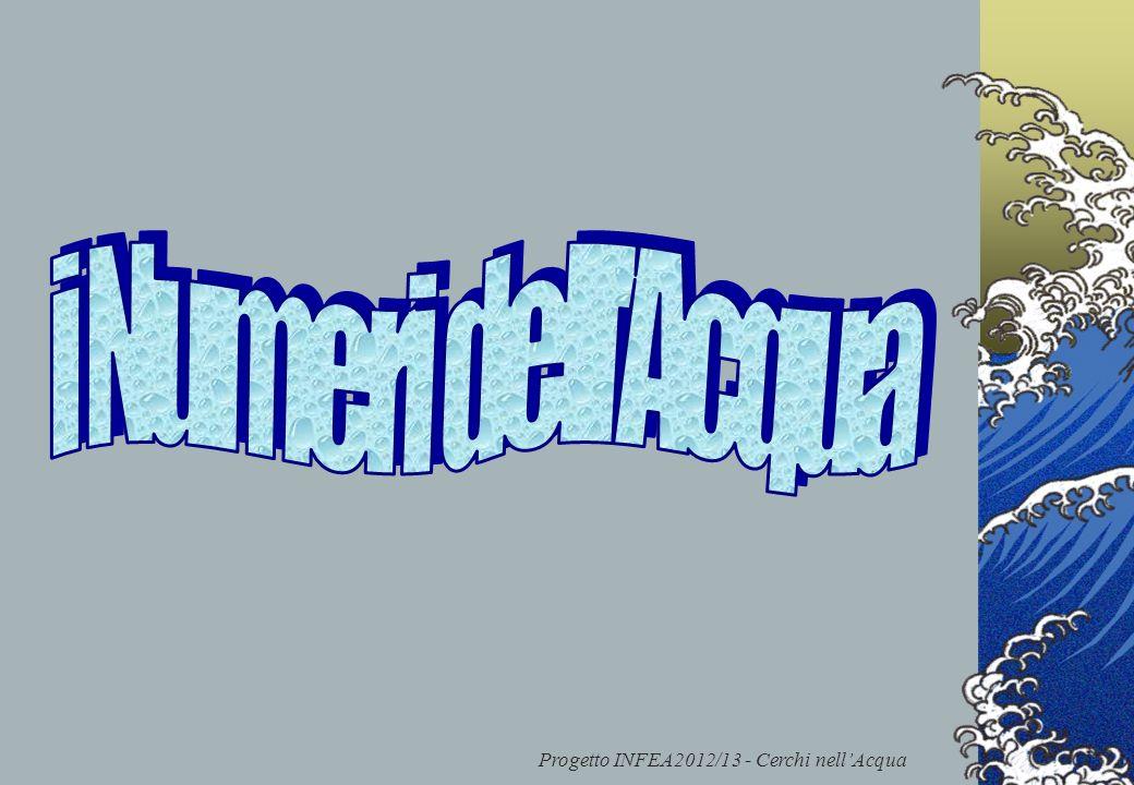 Progetto INFEA2012/13 - Cerchi nell'Acqua