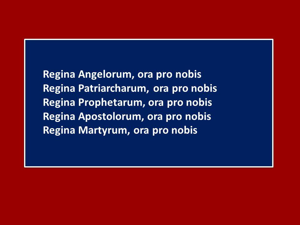 Regina Angelorum, ora pro nobis Regina Patriarcharum, ora pro nobis Regina Prophetarum, ora pro nobis Regina Apostolorum, ora pro nobis Regina Martyrum, ora pro nobis