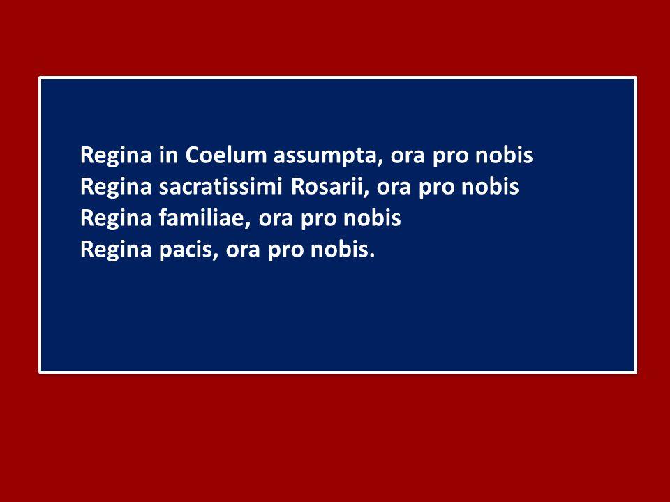 Regina in Coelum assumpta, ora pro nobis Regina sacratissimi Rosarii, ora pro nobis Regina familiae, ora pro nobis Regina pacis, ora pro nobis.