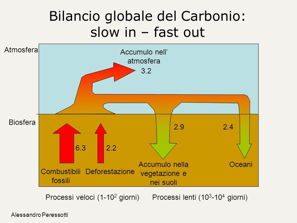 Bilancio globale del Carbonio: slow in – fast out