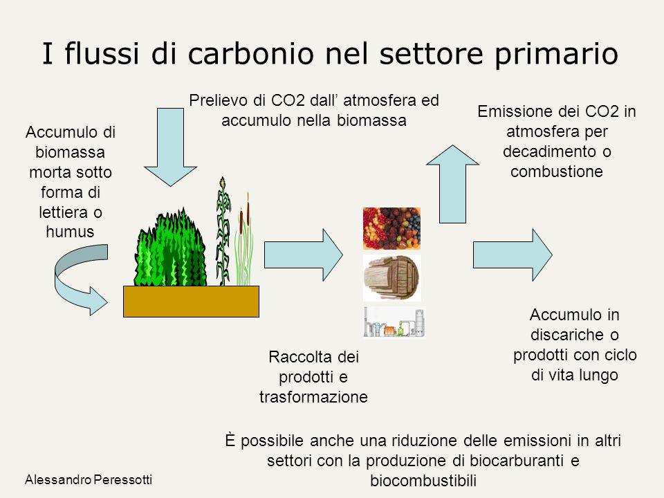 I flussi di carbonio nel settore primario