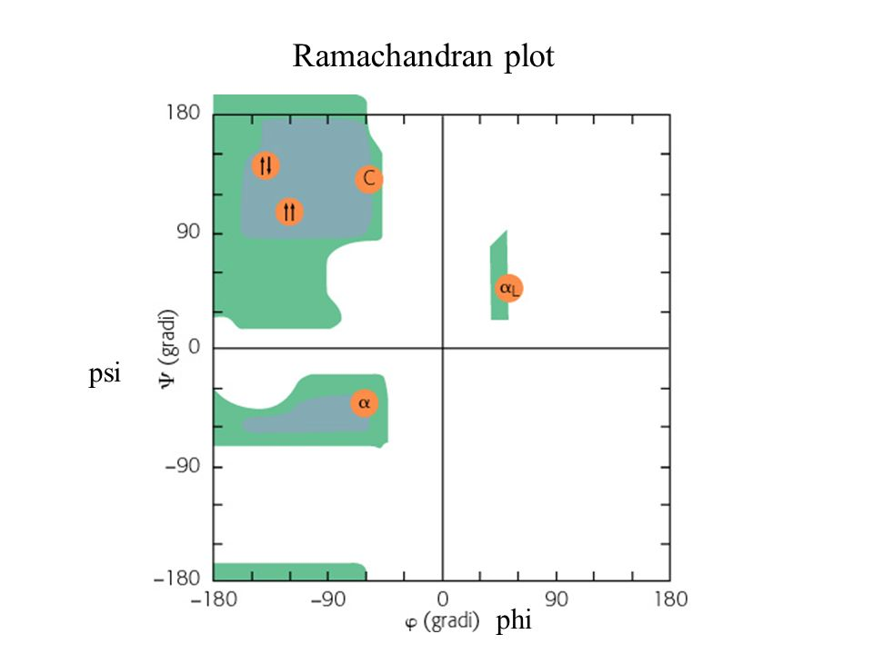Ramachandran plot psi phi