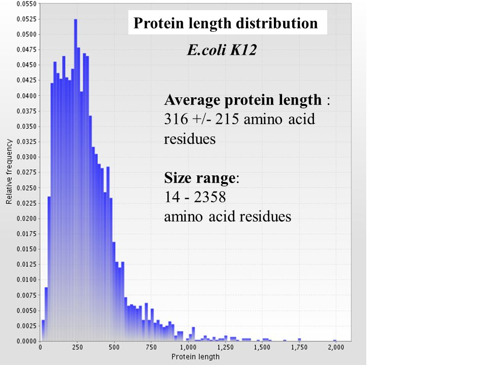 Protein length distribution