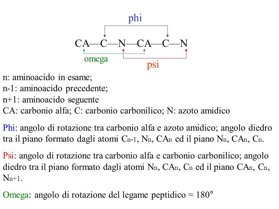 phi CA—C—N—CA—C—N psi omega n: aminoacido in esame;