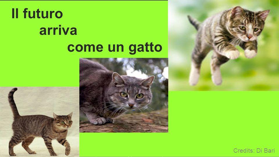 Il futuro arriva come un gatto Credits: Di Bari