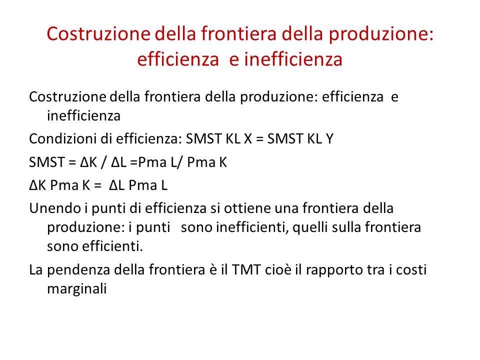 Costruzione della frontiera della produzione: efficienza e inefficienza