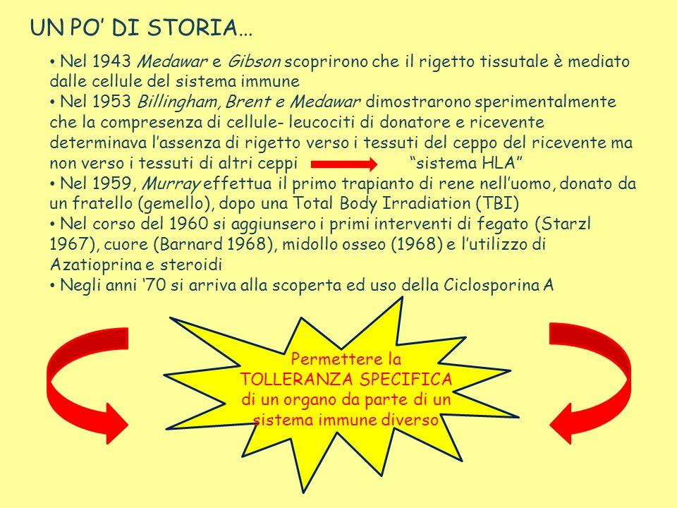 UN PO' DI STORIA… Nel 1943 Medawar e Gibson scoprirono che il rigetto tissutale è mediato dalle cellule del sistema immune.