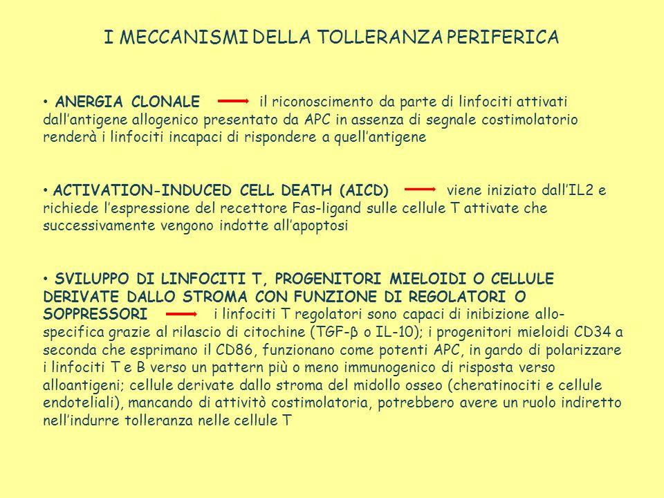 I MECCANISMI DELLA TOLLERANZA PERIFERICA