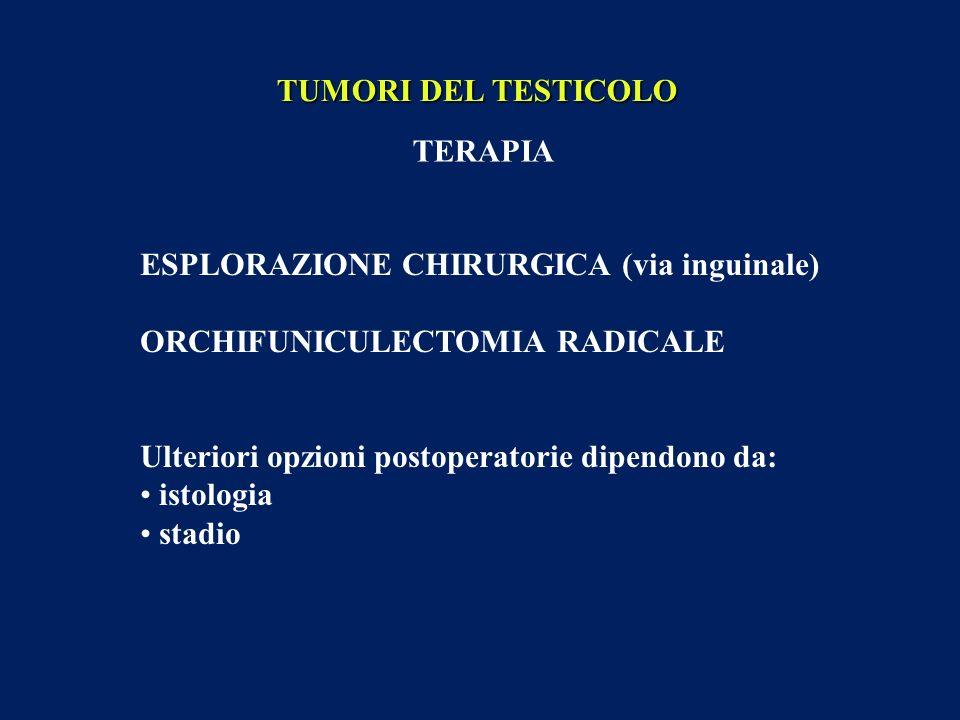 TUMORI DEL TESTICOLO TERAPIA. ESPLORAZIONE CHIRURGICA (via inguinale) ORCHIFUNICULECTOMIA RADICALE.