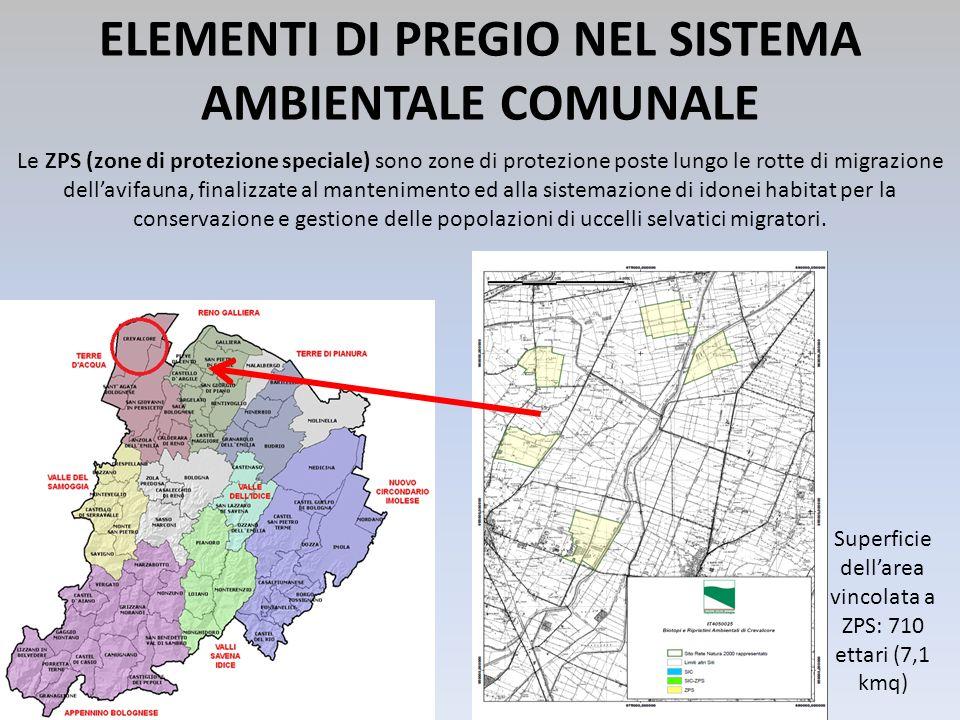 ELEMENTI DI PREGIO NEL SISTEMA AMBIENTALE COMUNALE