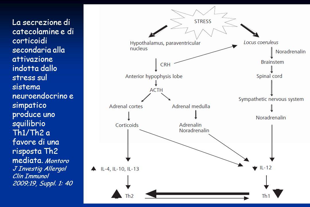 La secrezione di catecolamine e di corticoidi secondaria alla attivazione indotta dallo stress sul sistema neuroendocrino e simpatico produce uno squilibrio Th1/Th2 a favore di una risposta Th2 mediata.