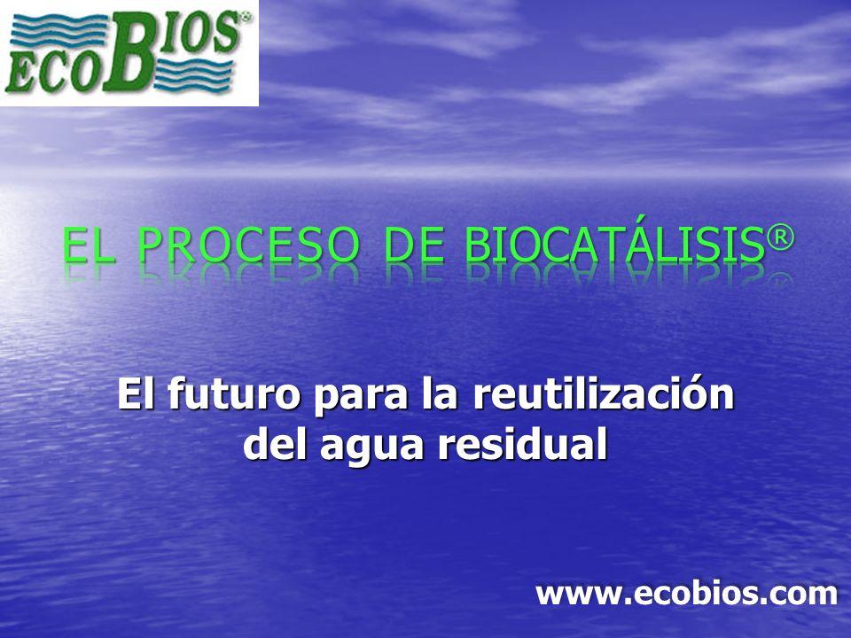 EL PROCESO DE BIOCATÁLISIS®