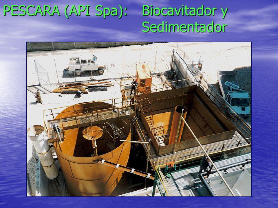 PESCARA (API Spa): Biocavitador y Sedimentador