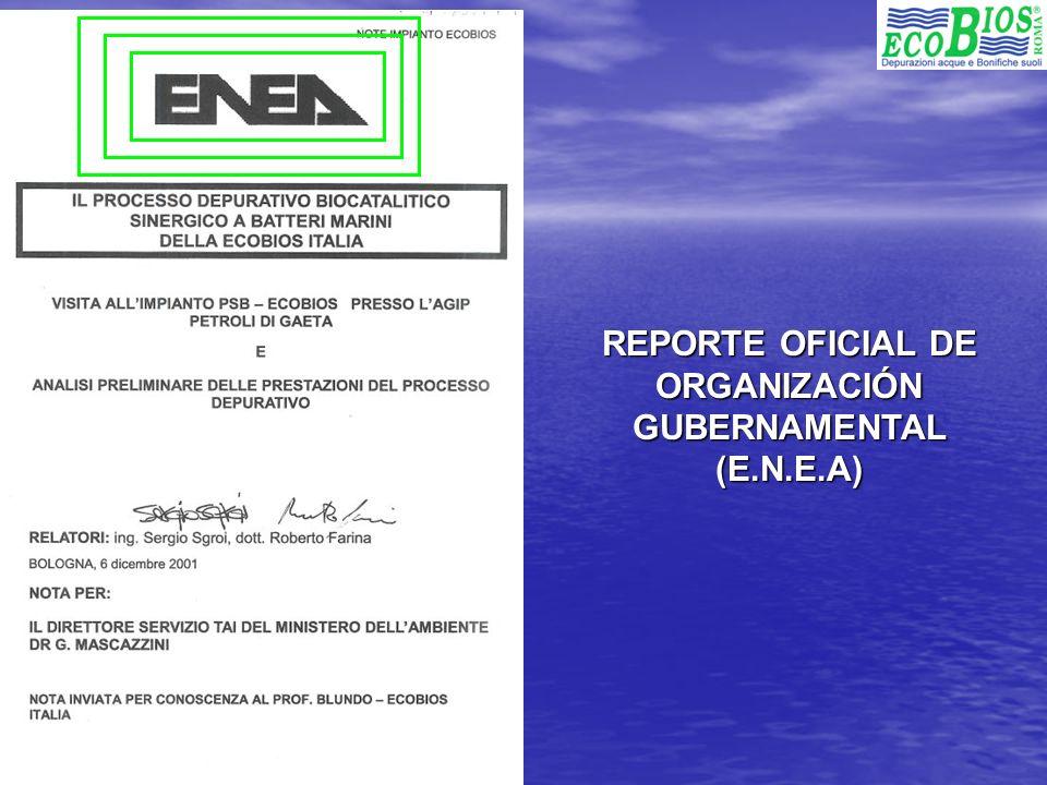 REPORTE OFICIAL DE ORGANIZACIÓN GUBERNAMENTAL