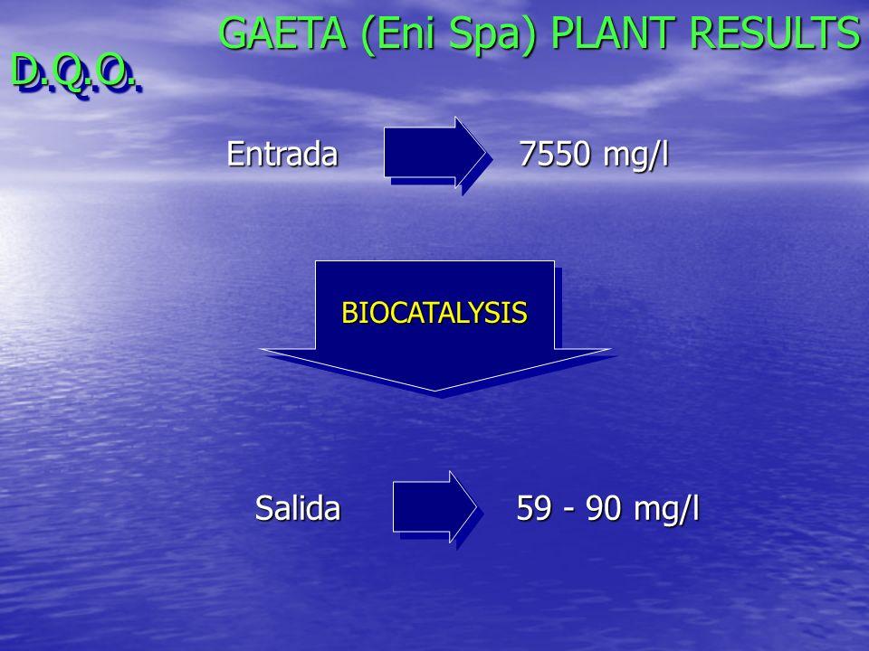 GAETA (Eni Spa) PLANT RESULTS D.Q.O.