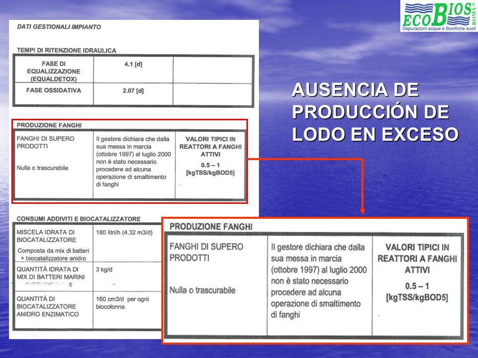 AUSENCIA DE PRODUCCIÓN DE LODO EN EXCESO