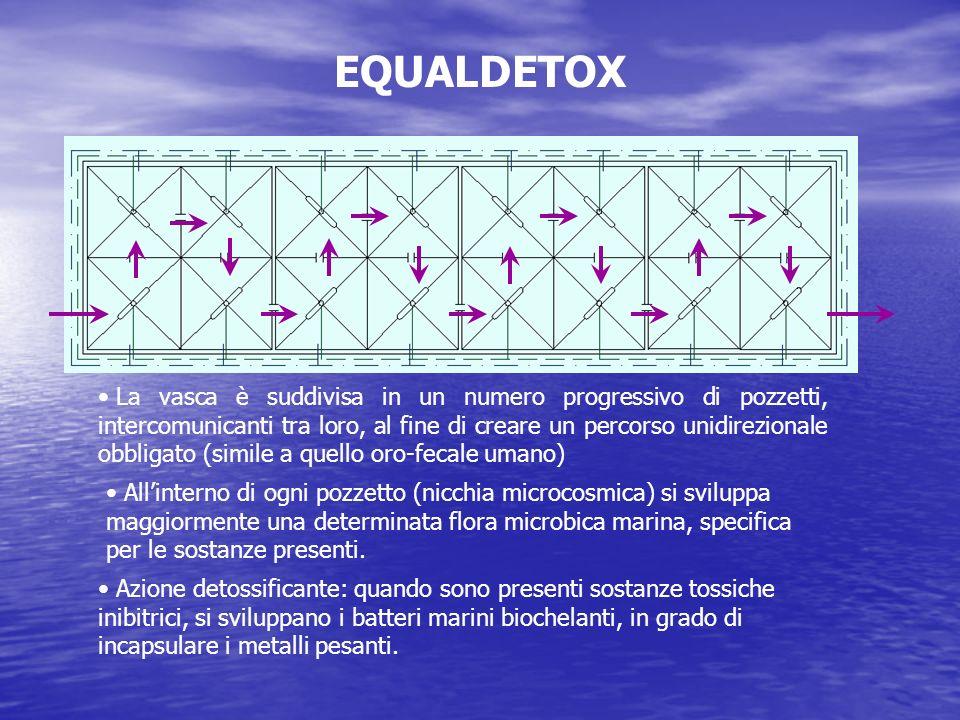 EQUALDETOX