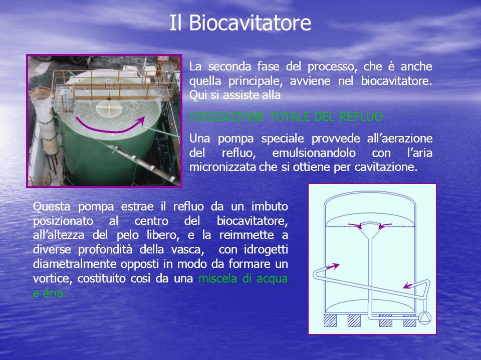 Il Biocavitatore La seconda fase del processo, che è anche quella principale, avviene nel biocavitatore. Qui si assiste alla.