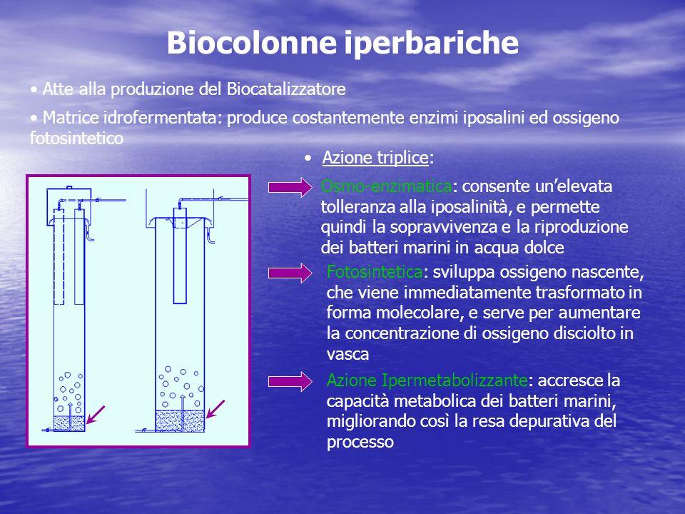 Biocolonne iperbariche