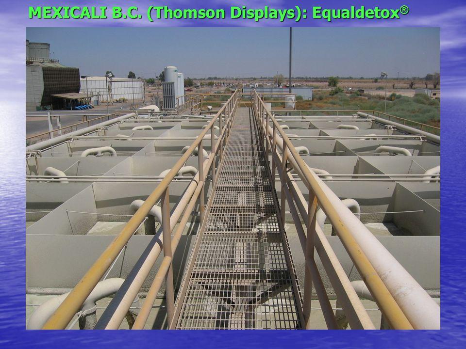 MEXICALI B.C. (Thomson Displays): Equaldetox®