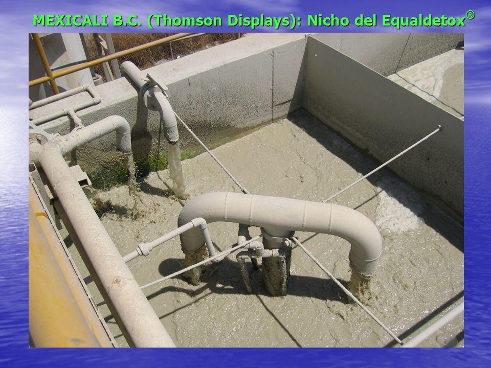 MEXICALI B.C. (Thomson Displays): Nicho del Equaldetox®