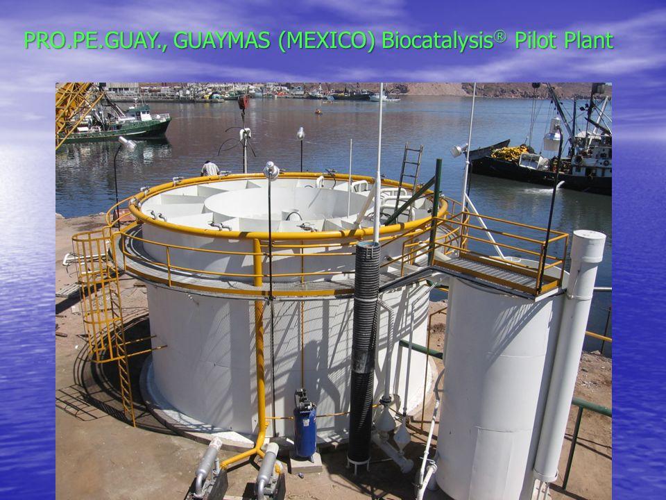 PRO.PE.GUAY., GUAYMAS (MEXICO) Biocatalysis® Pilot Plant