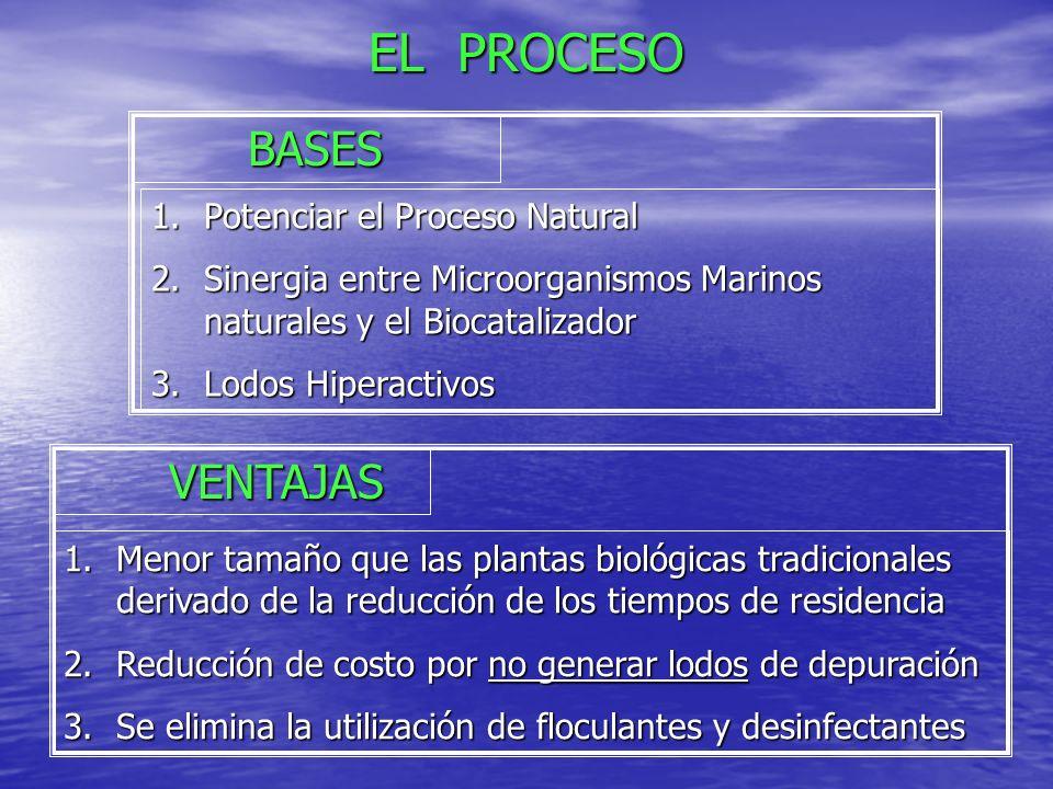 EL PROCESO BASES VENTAJAS Potenciar el Proceso Natural