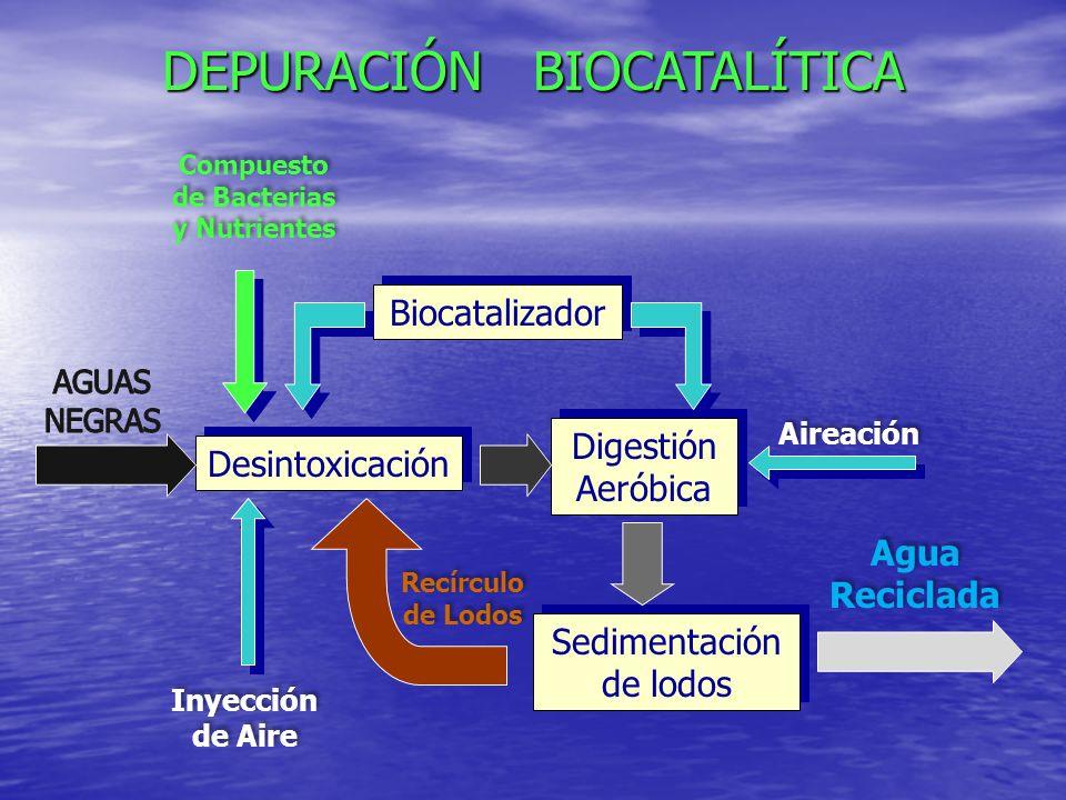 Compuesto de Bacterias y Nutrientes