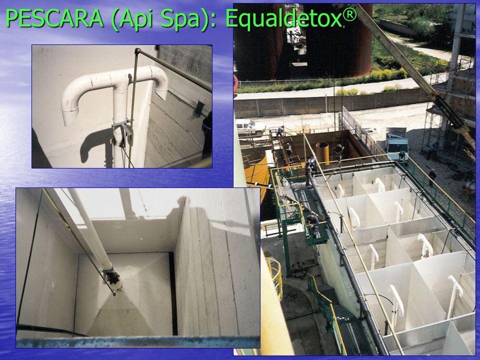 PESCARA (Api Spa): Equaldetox®