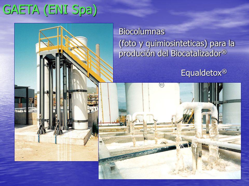 GAETA (ENI Spa) Biocolumnas