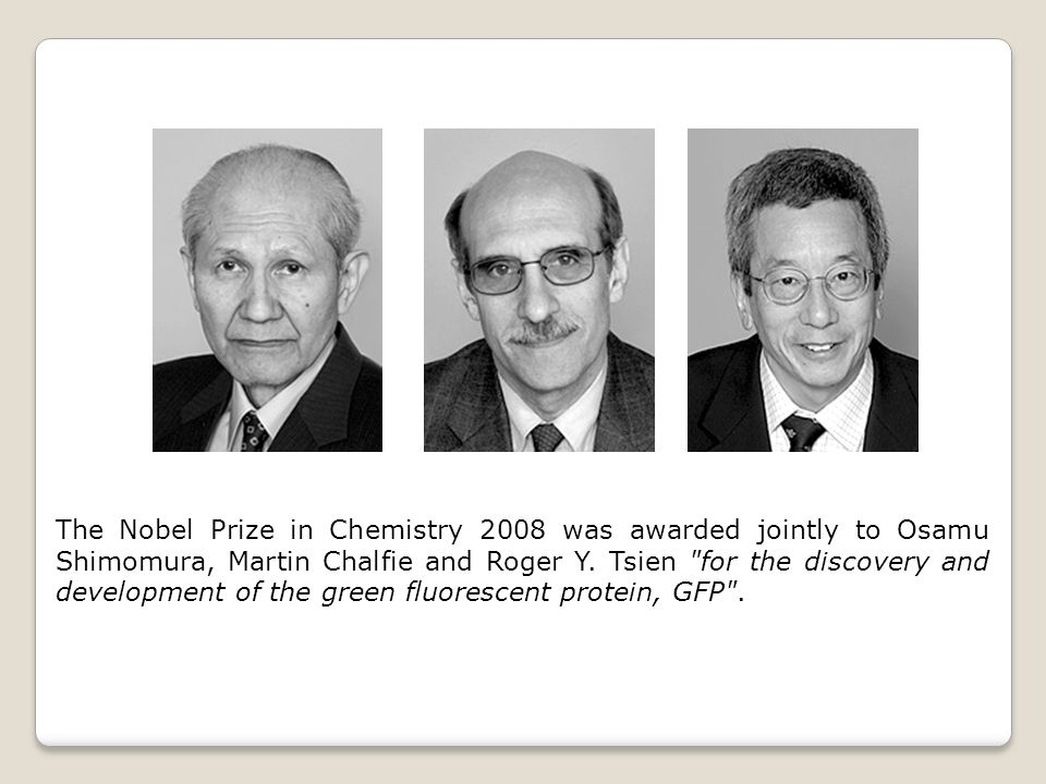 The Nobel Prize in Chemistry 2008 was awarded jointly to Osamu Shimomura, Martin Chalfie and Roger Y.