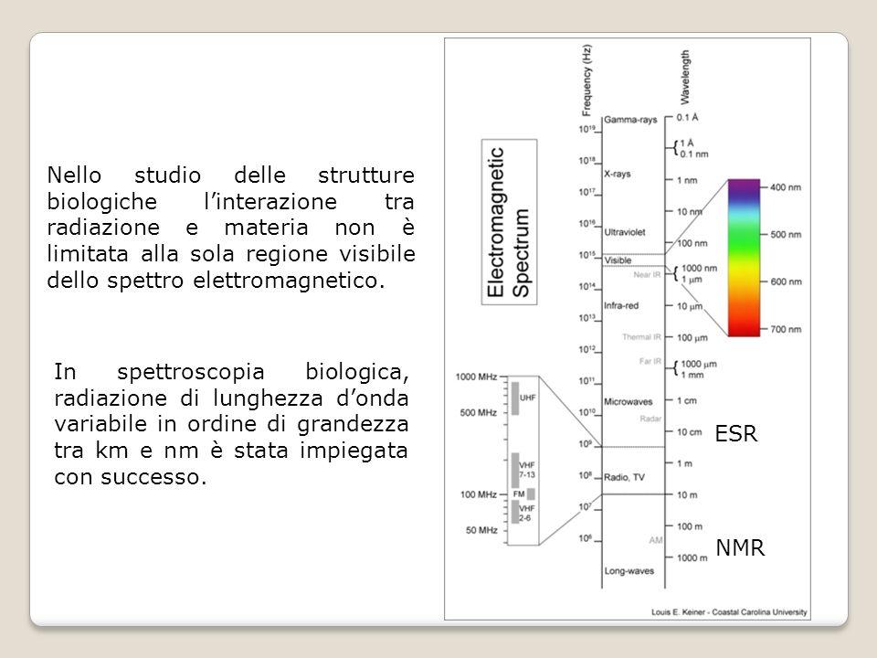 NMR ESR. In spettroscopia biologica, radiazione di lunghezza d'onda variabile in ordine di grandezza tra km e nm è stata impiegata con successo.