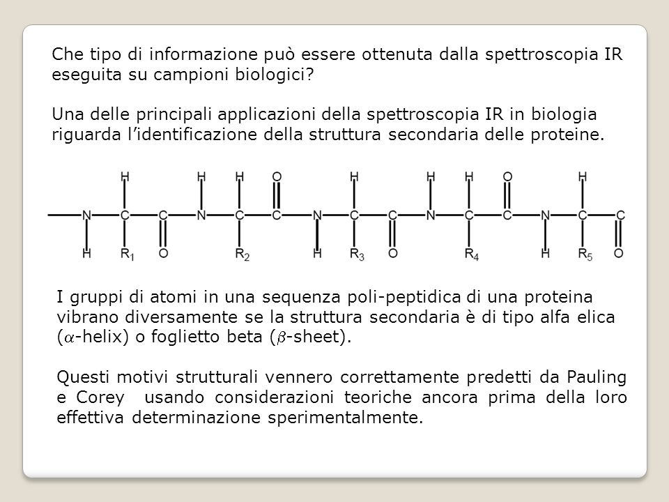 Che tipo di informazione può essere ottenuta dalla spettroscopia IR eseguita su campioni biologici