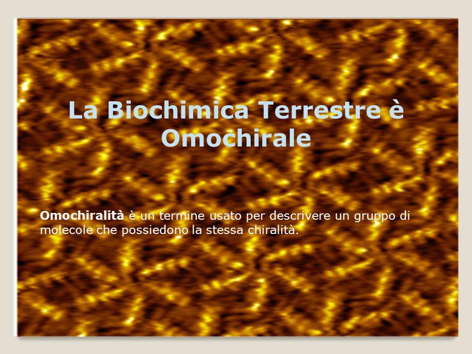La Biochimica Terrestre è Omochirale