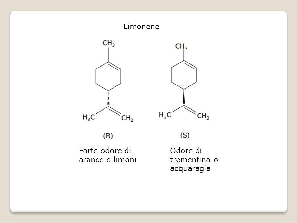 Limonene Forte odore di arance o limoni Odore di trementina o acquaragia