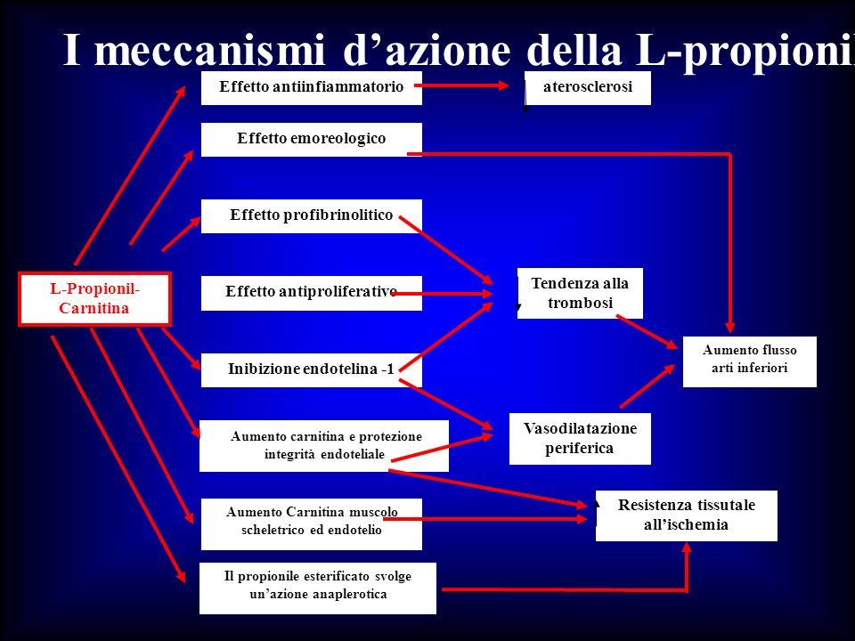 I meccanismi d'azione della L-propionil-Carnitina nell'arteriopatia periferica