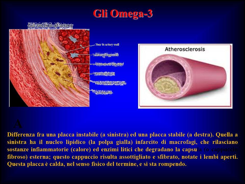 Gli Omega-3 A B.